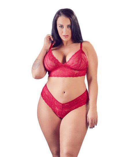 Cottelli Plus Size Red Lace Bra And Briefs Plus Size Lingerie