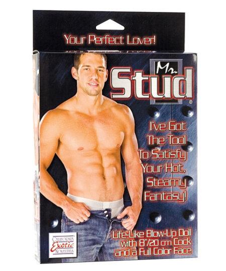 Mr Stud Love Doll Male Love Dolls